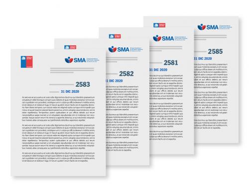 SMA publica resoluciones de programas y subprogramas para 2021